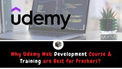 Why Udemy Web Development Course and Training are Best for Freshers?