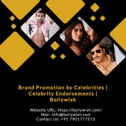 Bollywish offers video celebs