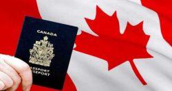 Nir Babani | Expertise In Visa & Immigration Consultant