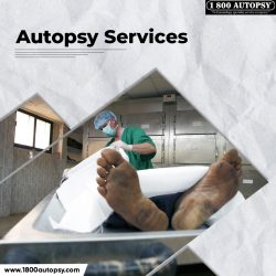 Autopsy Services