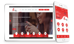 Best E Commerce Websites Development Company