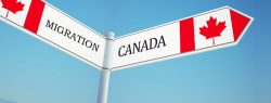Most Rated Canada Immigration Consultants in Jaipur