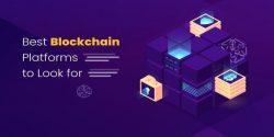 8 Best Blockchain Platforms For Creating A Decentralized Platform