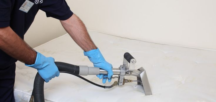 commercial cleaning services  Boss Optima