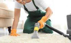 Carpet Cleaning Technologies | Boss Optima