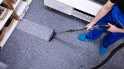 Best Carpet Cleaning Services | Boss Optima`