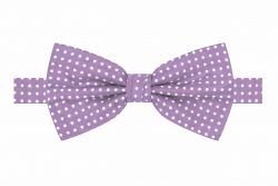 Blending Classic and Contemporary Fashion: Men Bow Tie and Suspenders