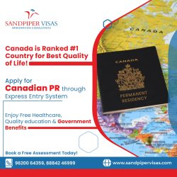 In What Way to Choose the Best Immigration Consultant in Bangalore