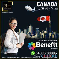 Canada Study Visa Hurry Up