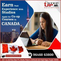 USA Study Visa With Spouse, Under F1 / F2 Category