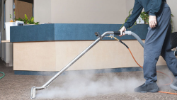 Professional Carpet Cleaning Service   Boss Optima