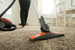 Get Best Carpet Cleaning Services   Boss Optima