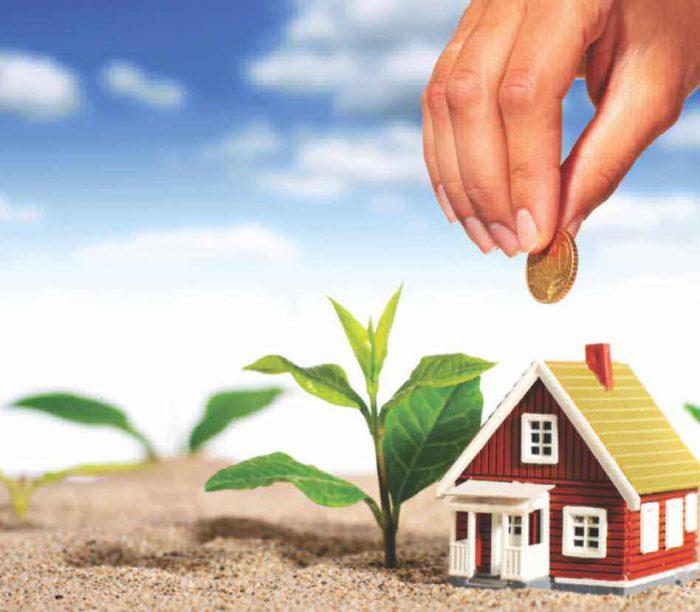 Find Jesse Keyes Real Estate Consultent and Designer