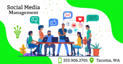 Effective SMM Strategies for Online Growth