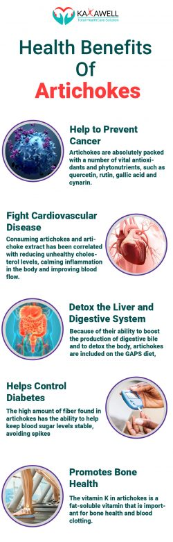 Benefits Of Artichokes