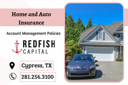 Insurance for Property and Car Protection