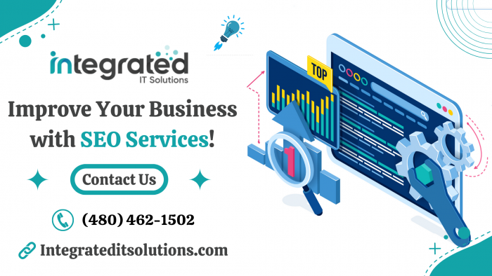 Develop Your Business Online with SEO Services!