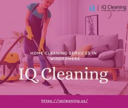 Home Cleaning Services in Windermere – IQ Cleaning