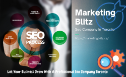 Effective And Result- Driven Seo Company In Toronto