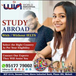 For Best Study Visa Options