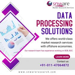 Data Processing Services Is Thereason Why You Will Never Get Apromotion