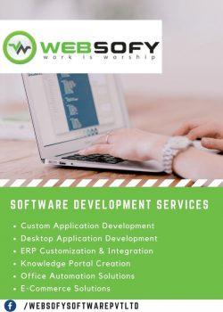 Software Development Company Lucknow | Websofy Software Pvt Ltd