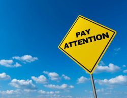 Why You Must Pay Attention to Your Employee's Payroll?