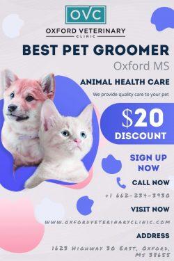 Best Pet Groomer in Oxford MS