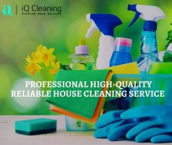 Professional High-Quality Reliable House Cleaning Service