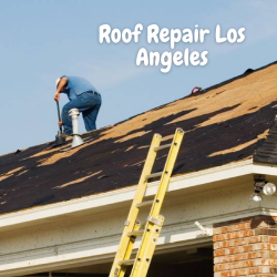 Expert Roof Repair In Los Angeles To Resolve Your Distress