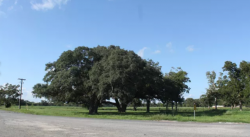 RV Parks in Sweeny Texas