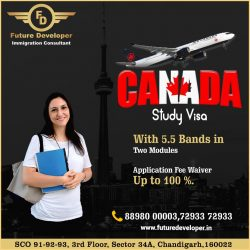 Settle In Canada With Study Visa
