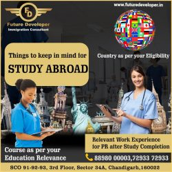 Study & Settle – Abroad With Future Developer