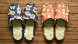Easy Ways to Find the Best Vegan Sandals