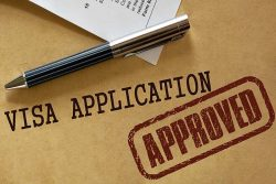 Advice For Visa & Immigration Services | Nir Babani