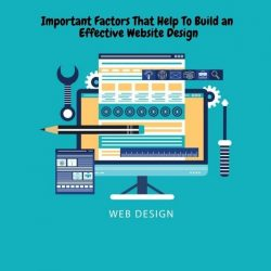 Important Factors That Help to guide an Website Design