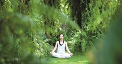 Meditation For Stress | Art of Living Foundation