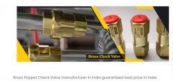 brass check valve manufacturers