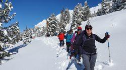 Snowshoeing In Alps