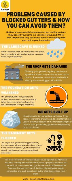 Problems caused by Blocked Gutters & How You Can Avoid Them?