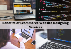 Ecommerce Web Designing Services