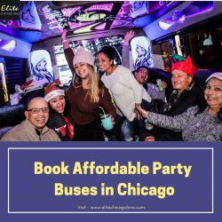 Book Affordable Party Buses in Chicago