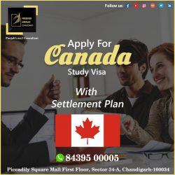 Canada Study Visa With Settlement Plan