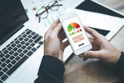 Check Free CIBIL Score – Get Credit Score Report Online Now