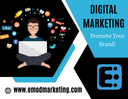 Create Brand Loyalty with Digital Advertising