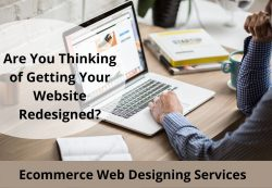 Affordable Ecommerce Web Designing Services