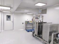 Ozone disinfection method for cleanroom