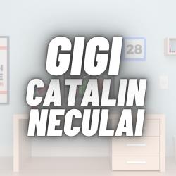 Neculai Gigi Catalin | Seo An Expert