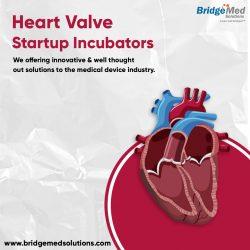 Heart Valve Startup Incubators