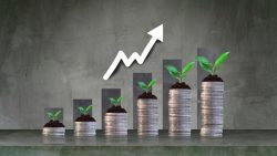 How to Start Investing: A Guide for Beginners